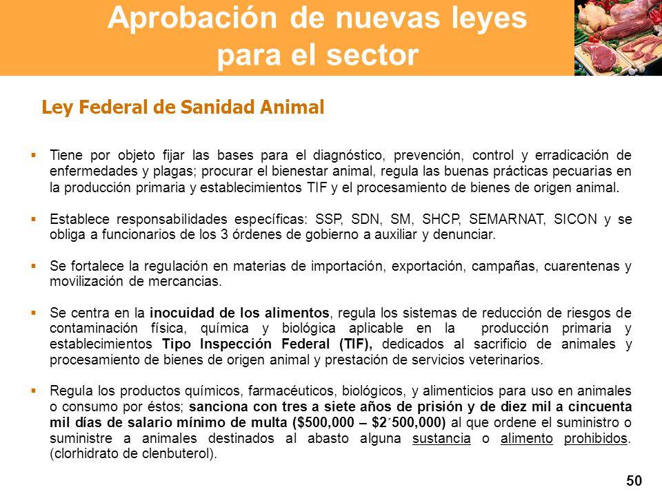 Proyección 2007 Producción Agropecuaria y Pesquera Proyección 2007 Producción Agropecuaria y Pesquera Tiene por objeto fijar las bases para el diagnós