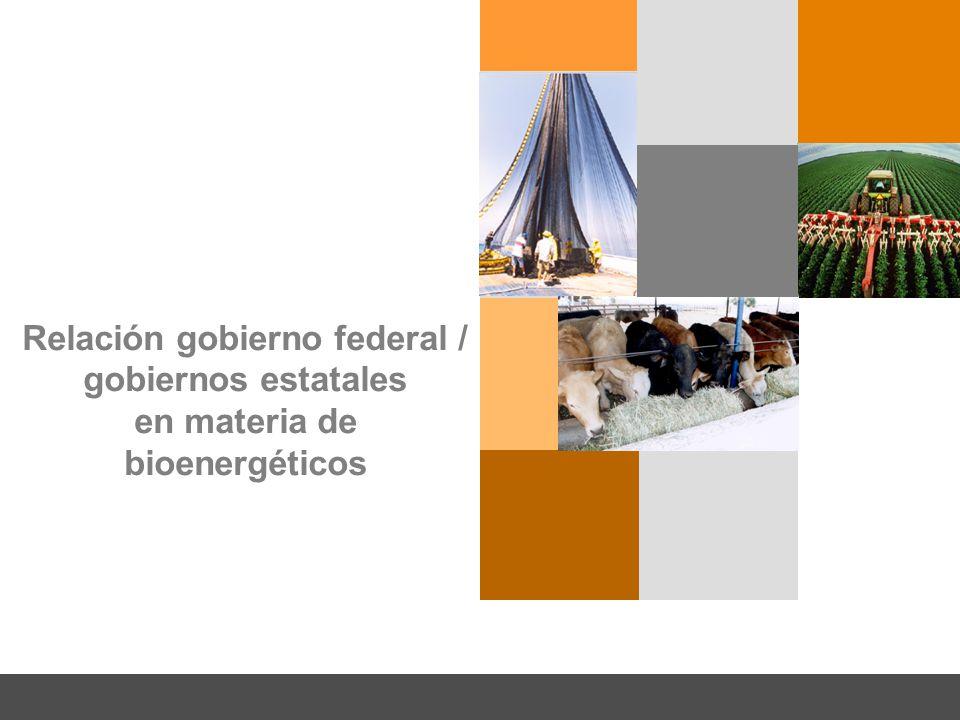 Relación gobierno federal / gobiernos estatales en materia de bioenergéticos