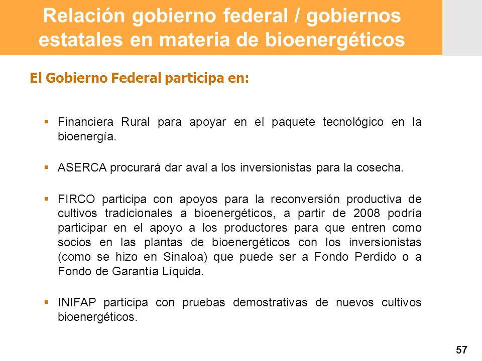 Proyección 2007 Producción Agropecuaria y Pesquera Proyección 2007 Producción Agropecuaria y Pesquera El Gobierno Federal participa en: Financiera Rural para apoyar en el paquete tecnológico en la bioenergía.