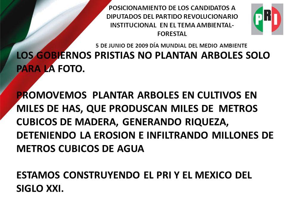 POSICIONAMIENTO DE LOS CANDIDATOS A DIPUTADOS DEL PARTIDO REVOLUCIONARIO INSTITUCIONAL EN EL TEMA AMBIENTAL- FORESTAL 5 DE JUNIO DE 2009 DÍA MUNDIAL DEL MEDIO AMBIENTE LOS GOBIERNOS PRISTIAS NO PLANTAN ARBOLES SOLO PARA LA FOTO.