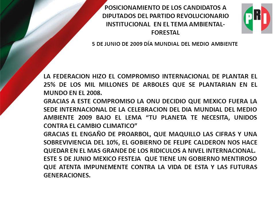 POSICIONAMIENTO DE LOS CANDIDATOS A DIPUTADOS DEL PARTIDO REVOLUCIONARIO INSTITUCIONAL EN EL TEMA AMBIENTAL- FORESTAL 5 DE JUNIO DE 2009 DÍA MUNDIAL DEL MEDIO AMBIENTE LA FEDERACION PROMUEVE DOS ESQUEMAS DE REFORESTACION: UNA EL PROCOREF CON LOS INDIGENAS, EN MINIMO 5 HECTAREAS CON UN APOYO DE MIL PESOS POR HECTAREA MAS LA PLANTA Y OTRA EL PRODEPLAN CON MINIMO DE 25 HECTAREAS Y MAXIMO DE 1,500 HECTAREAS CON $8,700 POR HECTAREA.