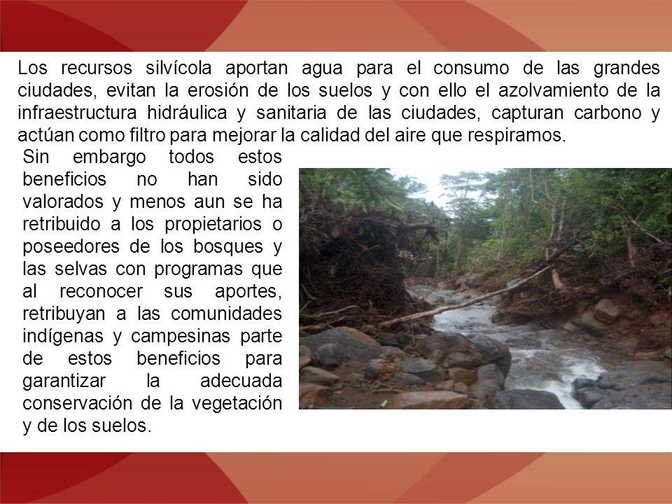 Los recursos silvícola aportan agua para el consumo de las grandes ciudades, evitan la erosión de los suelos y con ello el azolvamiento de la infraest