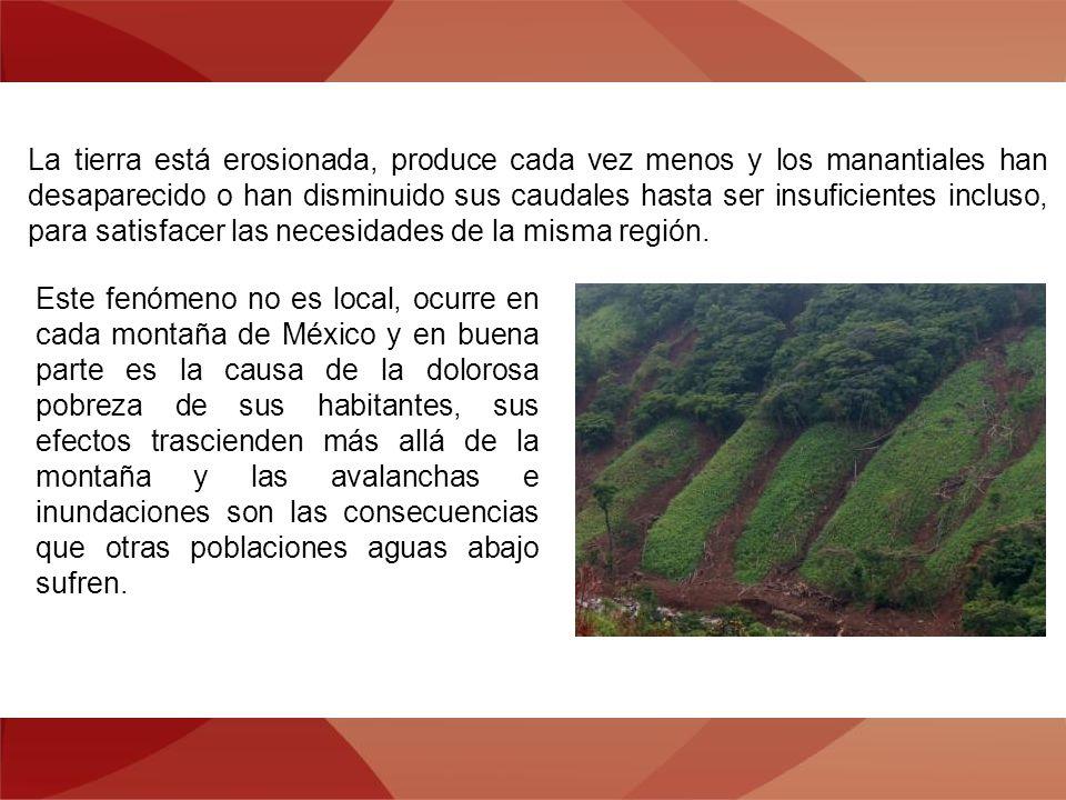 La tierra está erosionada, produce cada vez menos y los manantiales han desaparecido o han disminuido sus caudales hasta ser insuficientes incluso, para satisfacer las necesidades de la misma región.