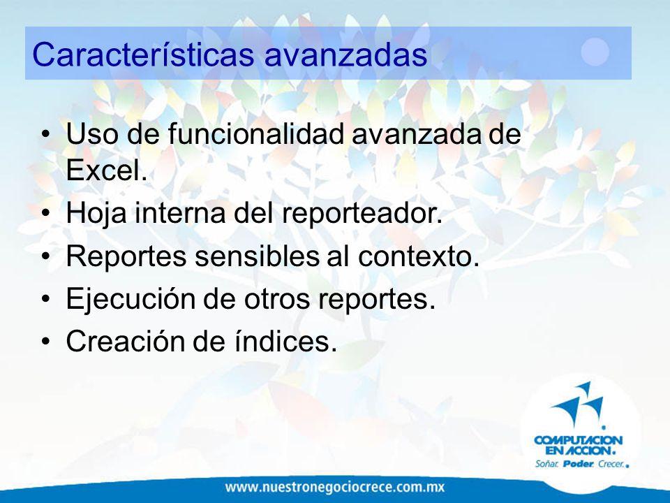 Características avanzadas Uso de funcionalidad avanzada de Excel. Hoja interna del reporteador. Reportes sensibles al contexto. Ejecución de otros rep