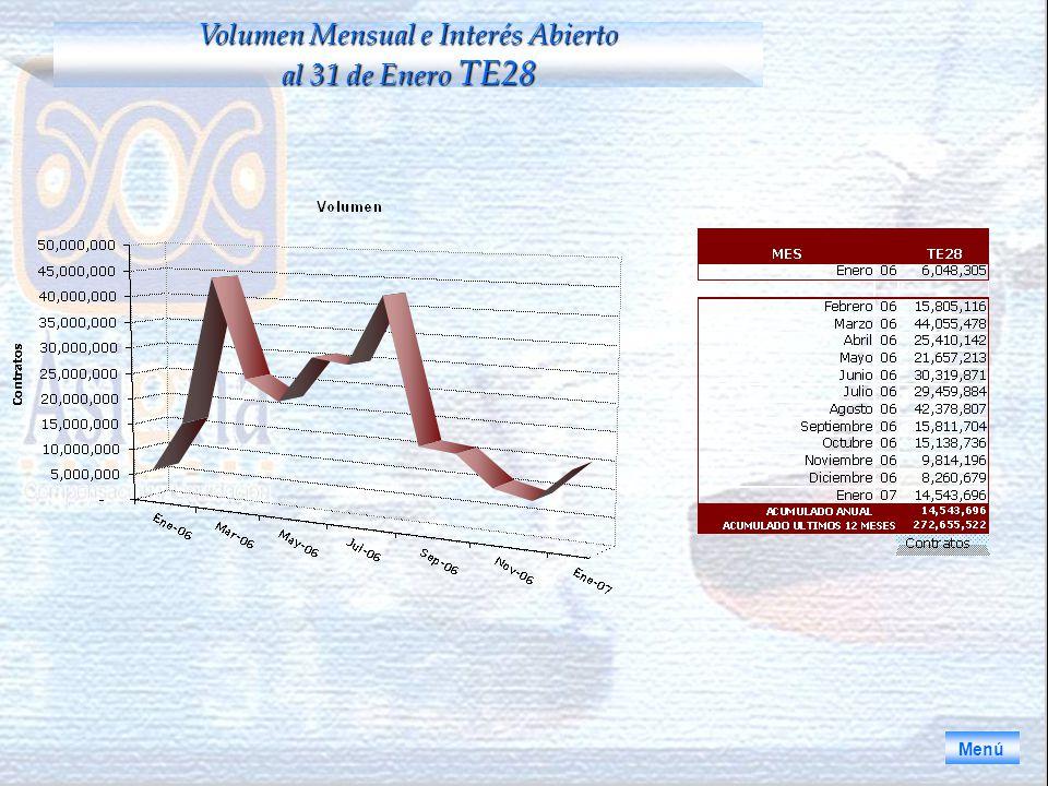 Volumen Mensual e Interés Abierto al 31 de Enero TE28
