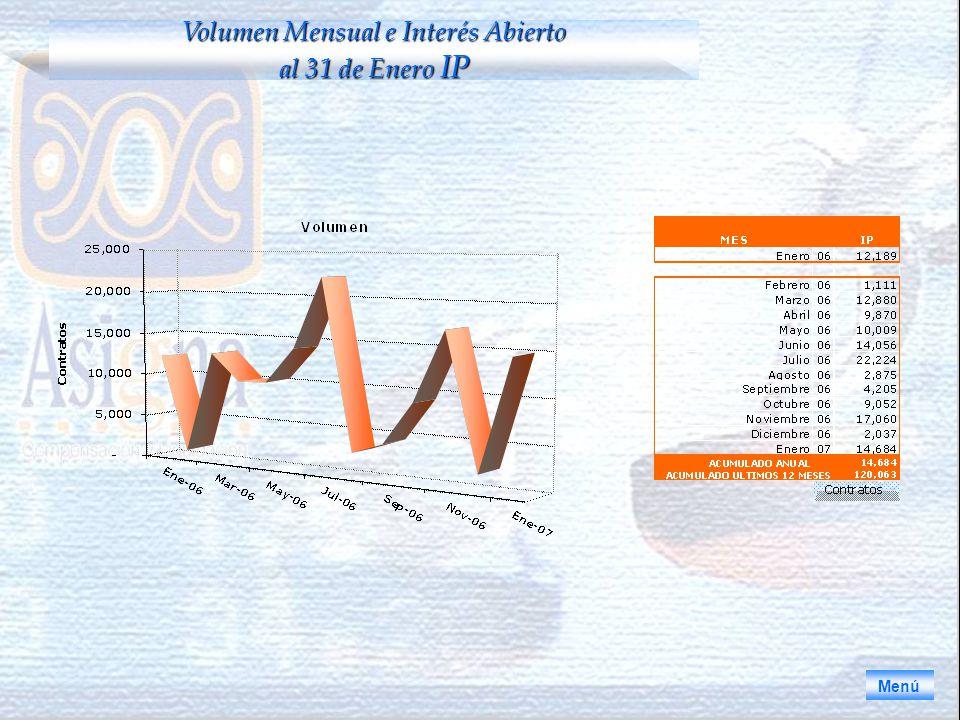 Menú Volumen Mensual e Interés Abierto al 31 de Enero IP