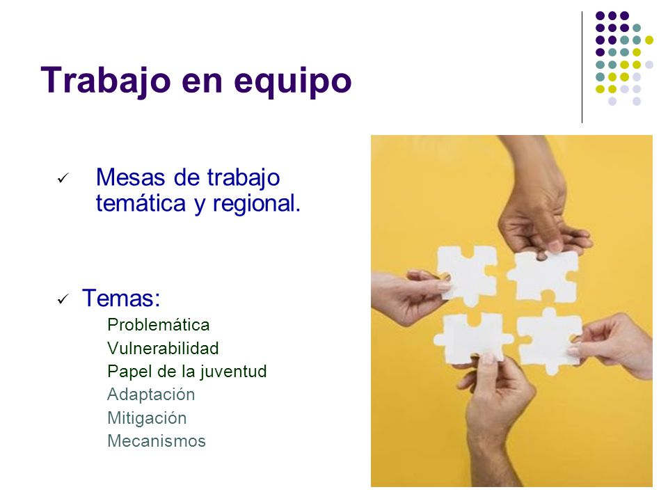 Trabajo en equipo Mesas de trabajo temática y regional. Temas: Problemática Vulnerabilidad Papel de la juventud Adaptación Mitigación Mecanismos