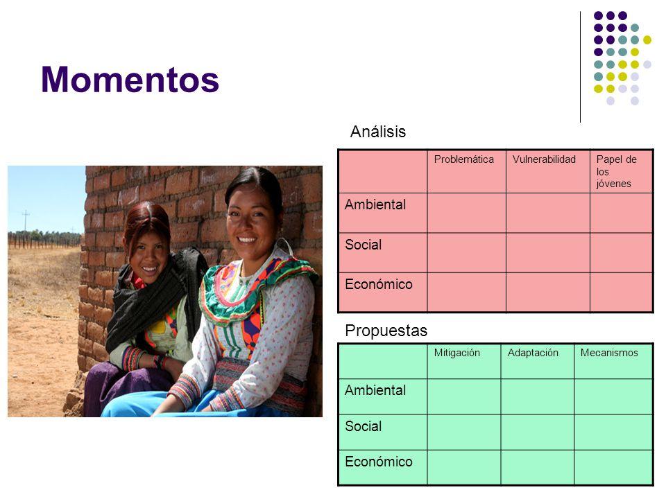 Momentos MitigaciónAdaptaciónMecanismos Ambiental Social Económico ProblemáticaVulnerabilidadPapel de los jóvenes Ambiental Social Económico Análisis