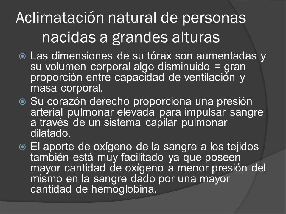 Aclimatación natural de personas nacidas a grandes alturas Las dimensiones de su tórax son aumentadas y su volumen corporal algo disminuido = gran proporción entre capacidad de ventilación y masa corporal.
