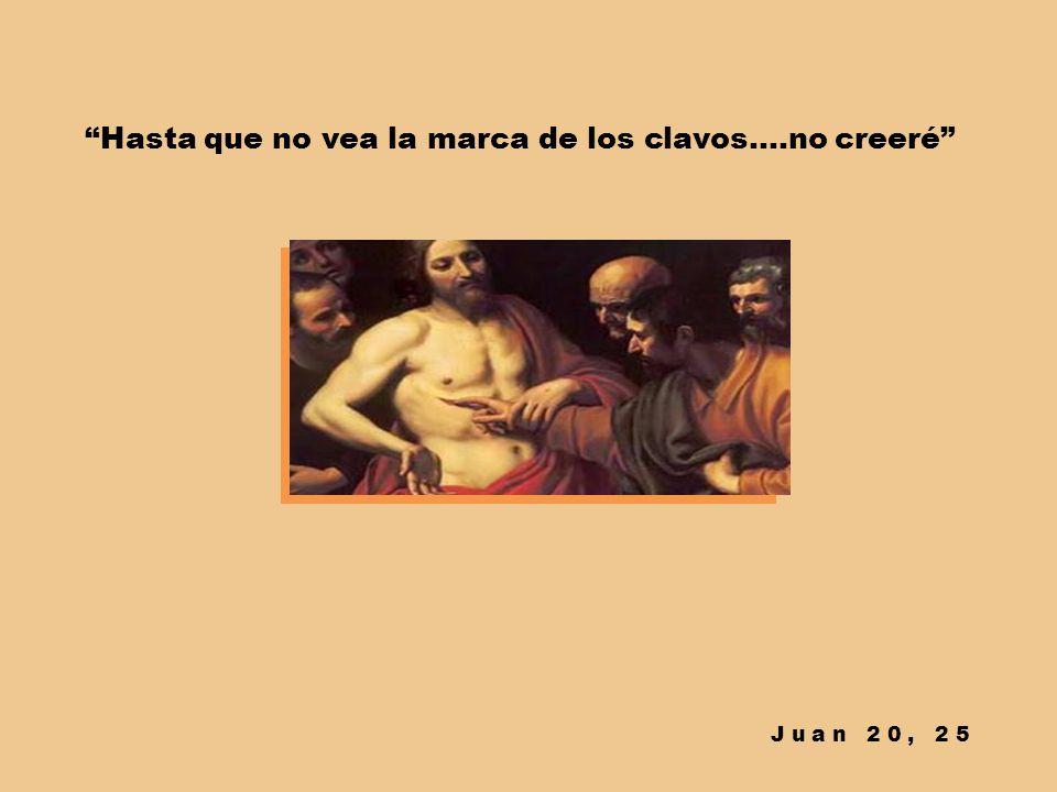 Algunos han argumentado que no todo podría ser así Pero no podemos decirnos discípulos si no asumimos el sueño de Jesús de unidad, de amor, de servici
