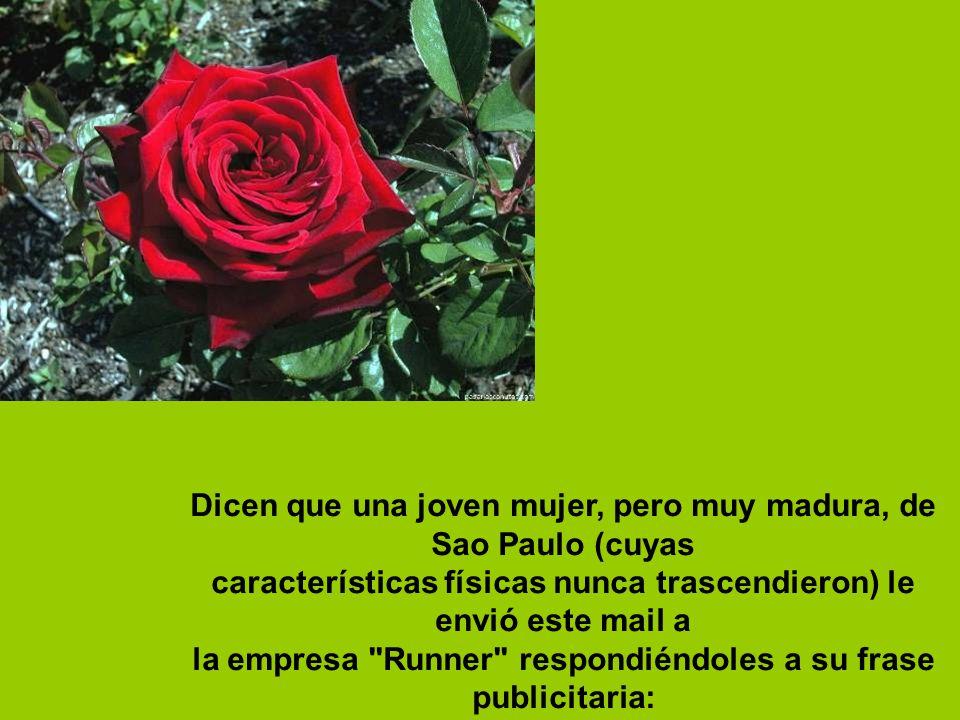 Dicen que una joven mujer, pero muy madura, de Sao Paulo (cuyas características físicas nunca trascendieron) le envió este mail a la empresa Runner respondiéndoles a su frase publicitaria: