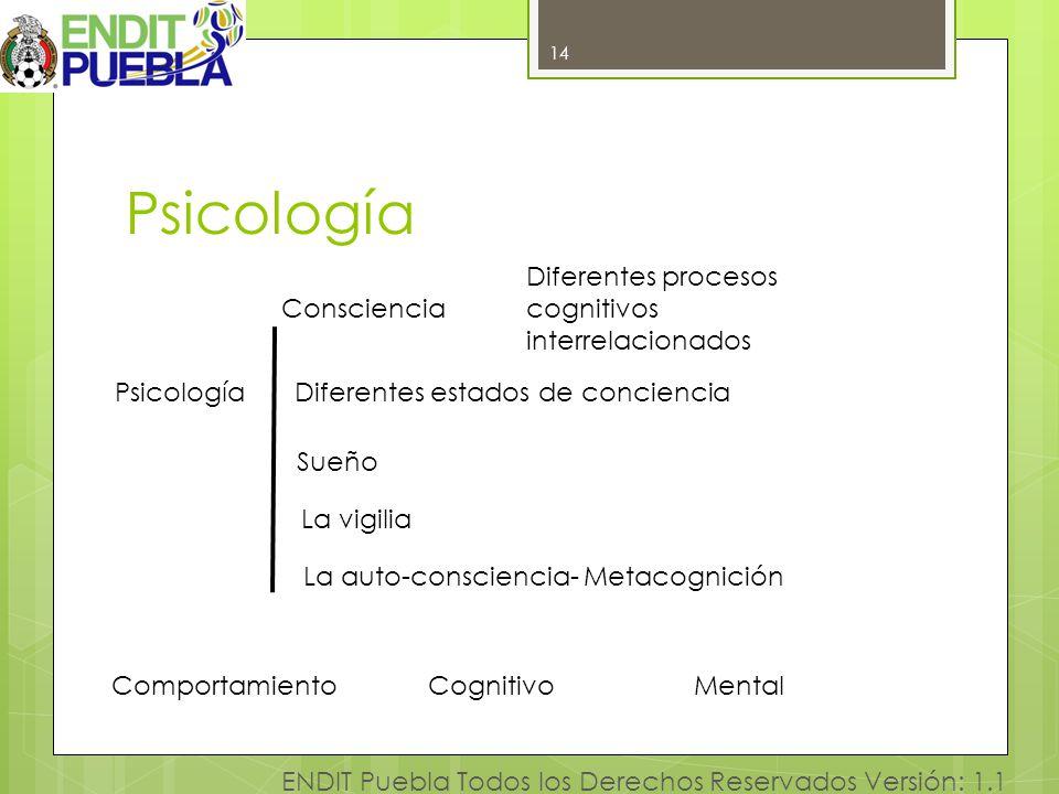 14 ENDIT Puebla Todos los Derechos Reservados Versión: 1.1 Psicología 14 Consciencia Psicología ComportamientoCognitivo Diferentes estados de concienc