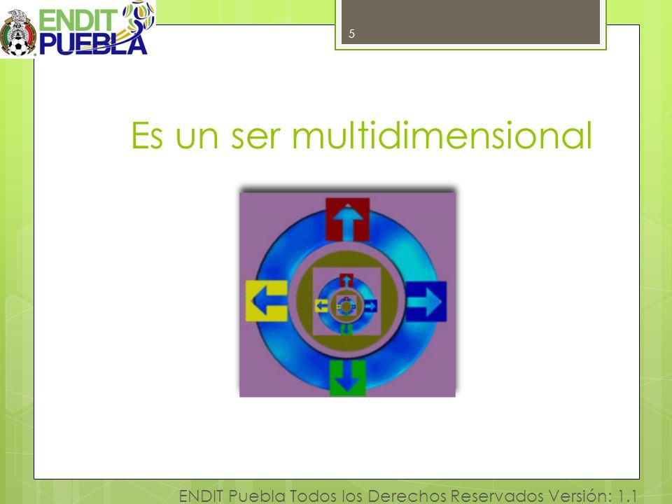 5 ENDIT Puebla Todos los Derechos Reservados Versión: 1.1 Es un ser multidimensional 5