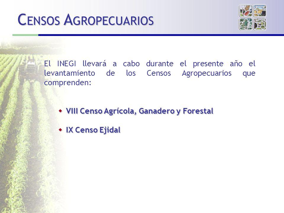 El INEGI llevará a cabo durante el presente año el levantamiento de los Censos Agropecuarios que comprenden: VIII Censo Agrícola, Ganadero y Forestal VIII Censo Agrícola, Ganadero y Forestal IX Censo Ejidal IX Censo Ejidal C ENSOS A GROPECUARIOS