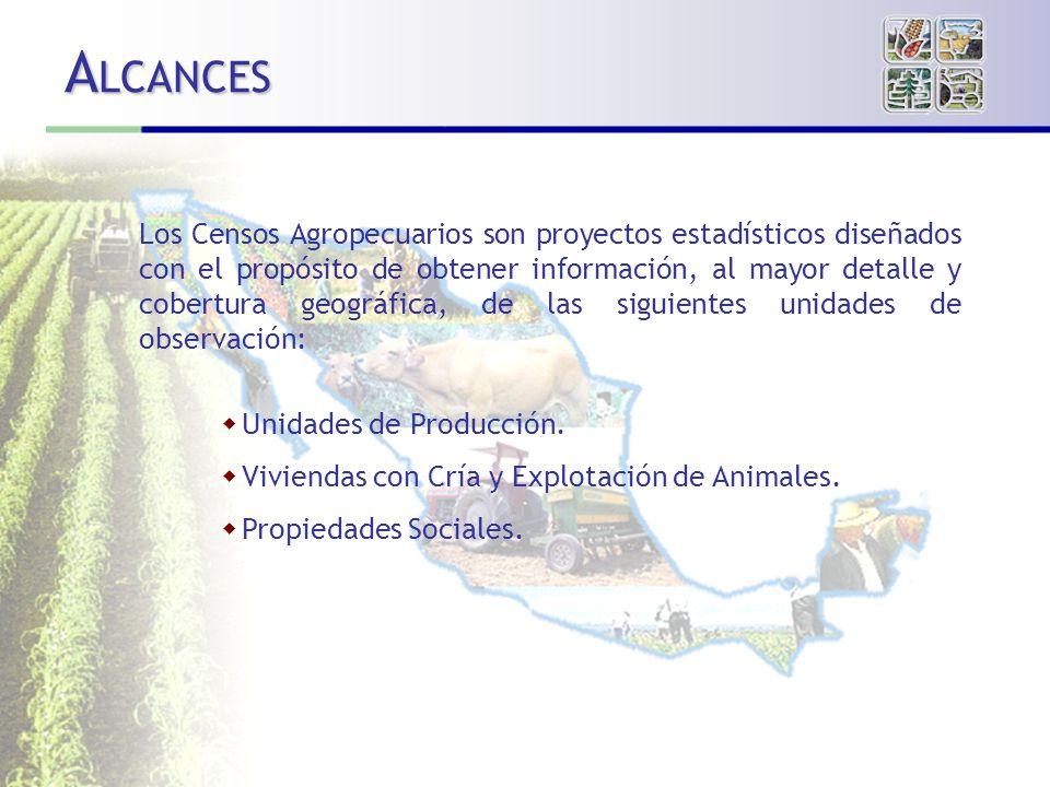 A LCANCES Los Censos Agropecuarios son proyectos estadísticos diseñados con el propósito de obtener información, al mayor detalle y cobertura geográfica, de las siguientes unidades de observación: Unidades de Producción.