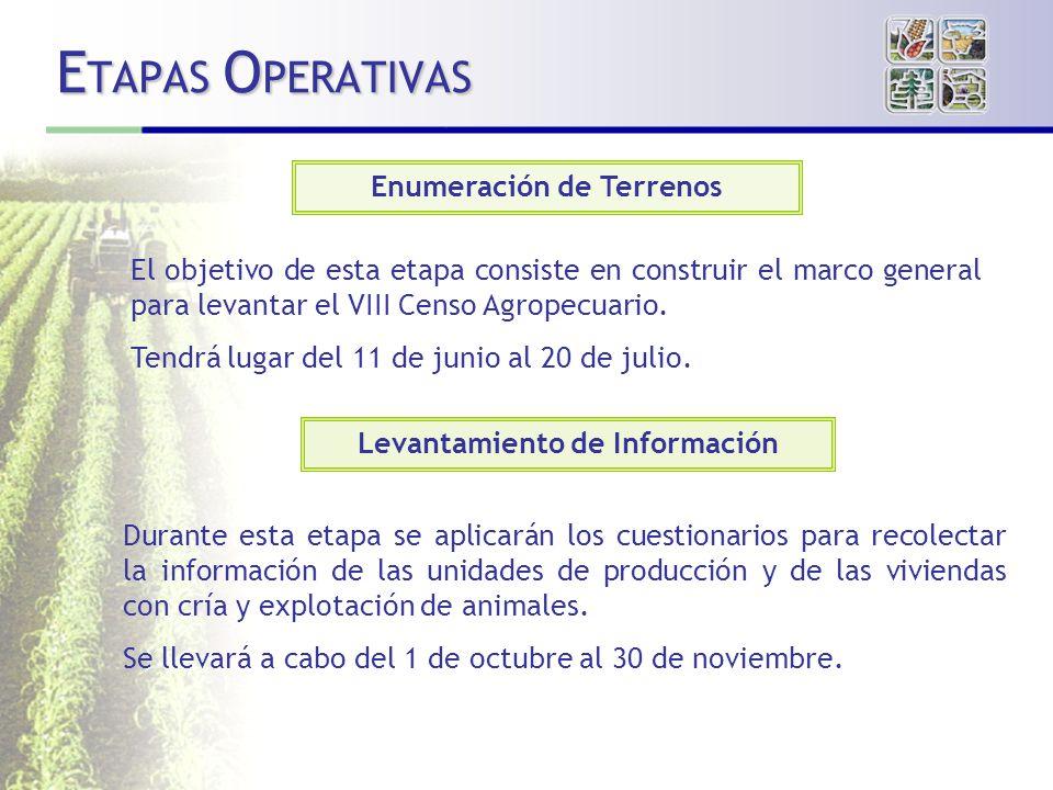 E TAPAS O PERATIVAS Enumeración de Terrenos Levantamiento de Información El objetivo de esta etapa consiste en construir el marco general para levantar el VIII Censo Agropecuario.