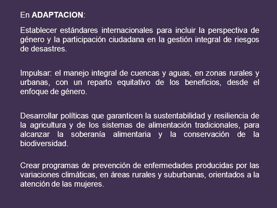 En ADAPTACION: Establecer estándares internacionales para incluir la perspectiva de género y la participación ciudadana en la gestión integral de ries