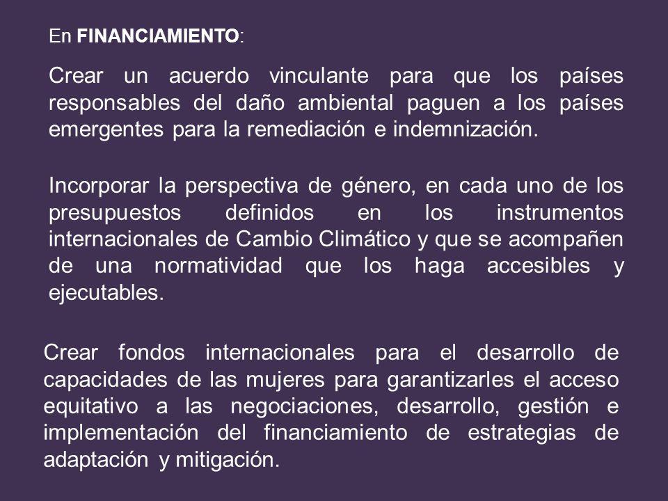 En FINANCIAMIENTO: Crear un acuerdo vinculante para que los países responsables del daño ambiental paguen a los países emergentes para la remediación