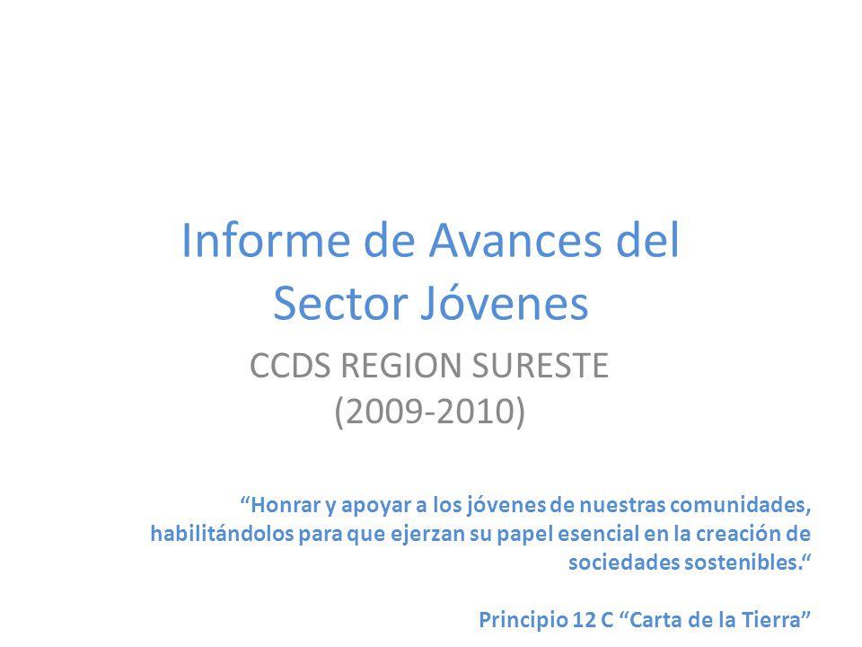 Informe de Avances del Sector Jóvenes CCDS REGION SURESTE (2009-2010) Honrar y apoyar a los jóvenes de nuestras comunidades, habilitándolos para que ejerzan su papel esencial en la creación de sociedades sostenibles.