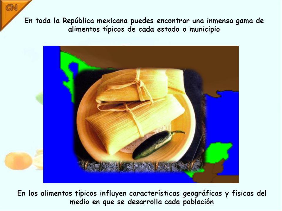 En toda la República mexicana puedes encontrar una inmensa gama de alimentos típicos de cada estado o municipio En los alimentos típicos influyen características geográficas y físicas del medio en que se desarrolla cada población