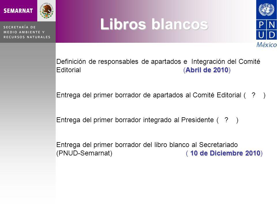 Abril de 2010 Definición de responsables de apartados e Integración del Comité Editorial (Abril de 2010) Entrega del primer borrador de apartados al C