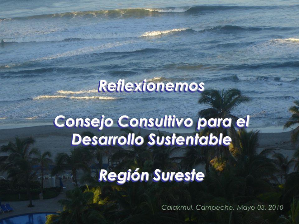 Reflexionemos Consejo Consultivo para el Desarrollo Sustentable Región Sureste Reflexionemos Consejo Consultivo para el Desarrollo Sustentable Región