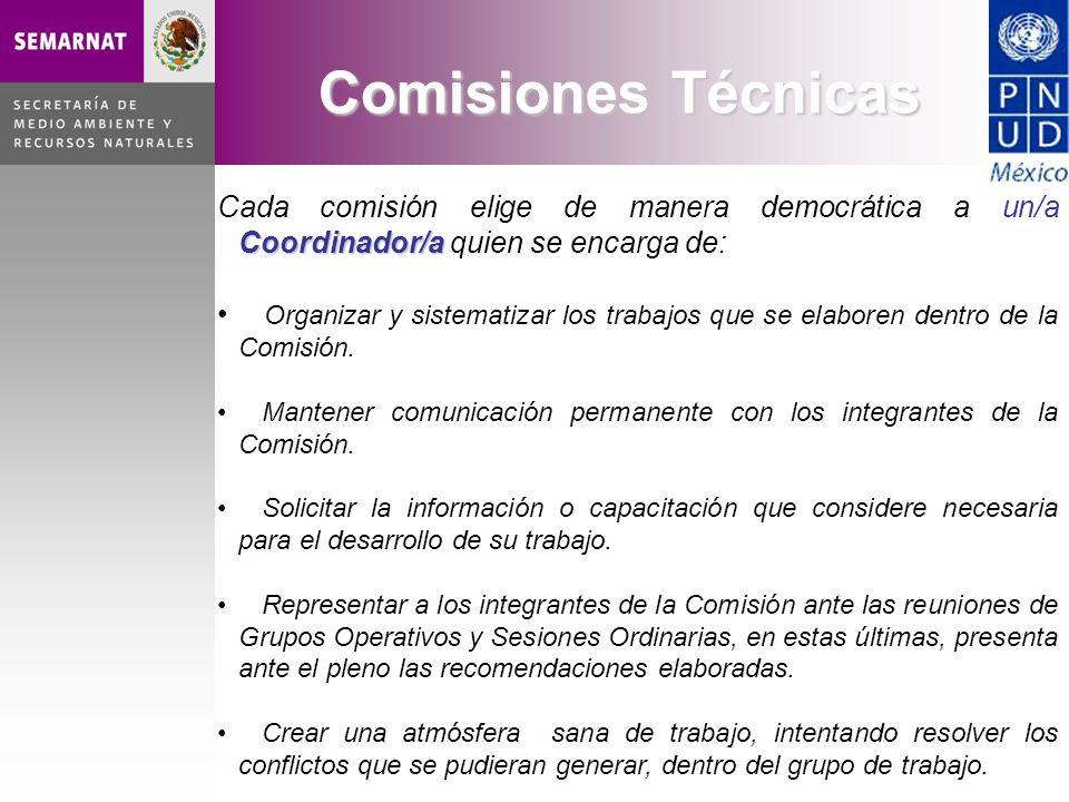 Coordinador/a Cada comisión elige de manera democrática a un/a Coordinador/a quien se encarga de: Organizar y sistematizar los trabajos que se elaboren dentro de la Comisión.