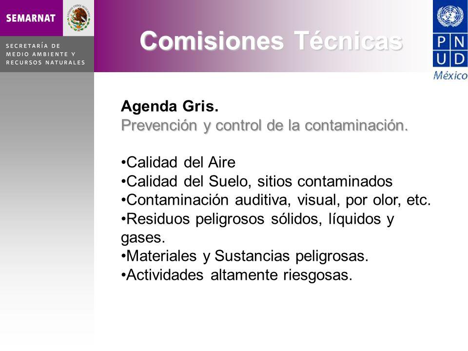 Agenda Gris. Prevención y control de la contaminación. Calidad del Aire Calidad del Suelo, sitios contaminados Contaminación auditiva, visual, por olo