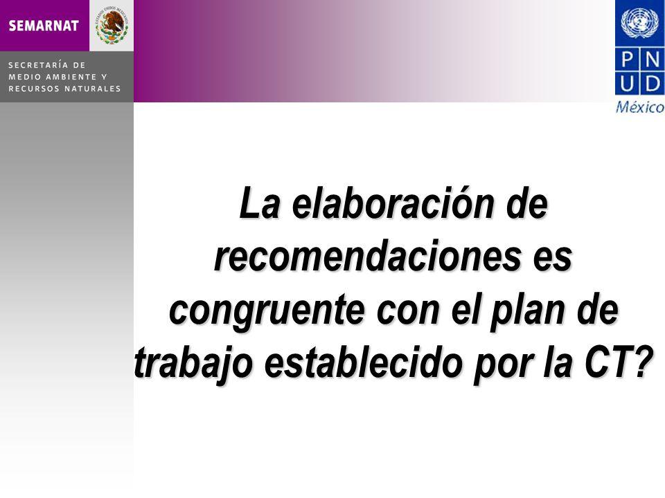 La elaboración de recomendaciones es congruente con el plan de trabajo establecido por la CT