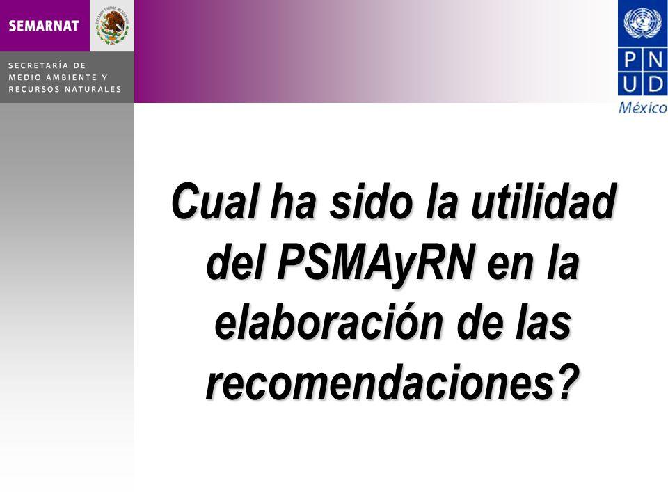 Cual ha sido la utilidad del PSMAyRN en la elaboración de las recomendaciones