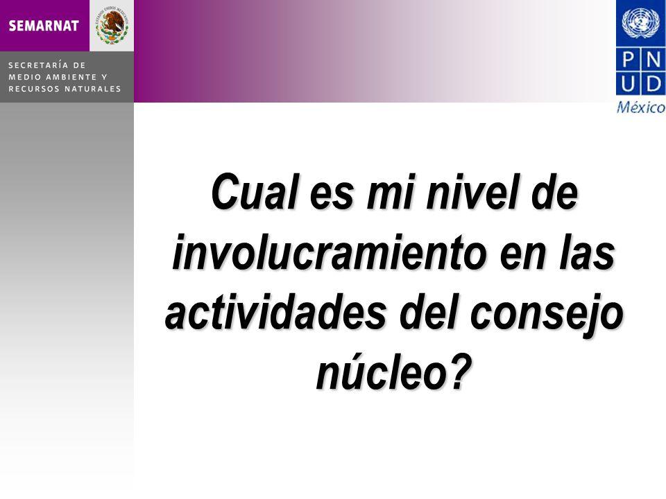 Cual es mi nivel de involucramiento en las actividades del consejo núcleo?