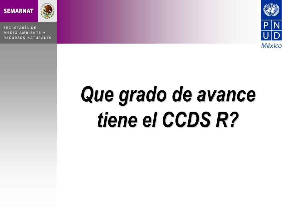 Que grado de avance tiene el CCDS R
