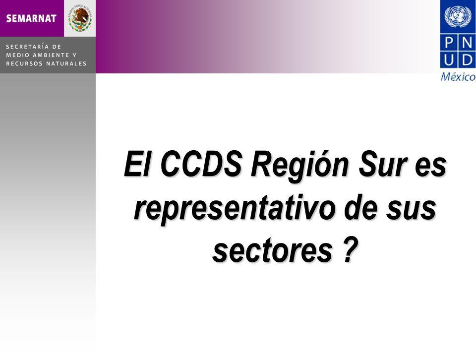 El CCDS Región Sur es representativo de sus sectores ?