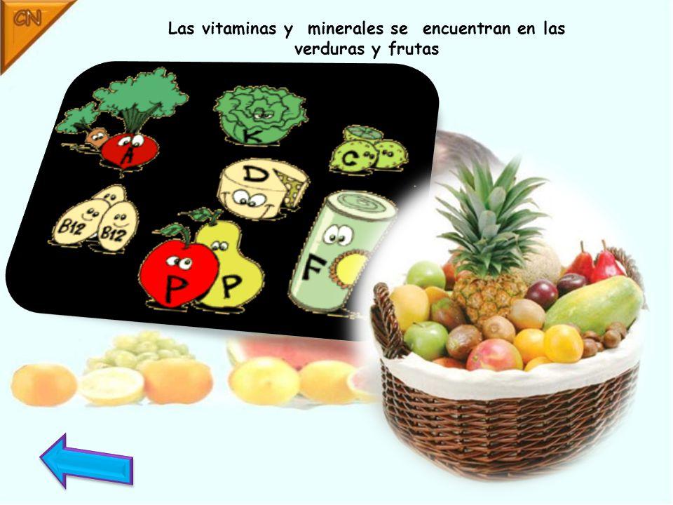 Las vitaminas y minerales se encuentran en las verduras y frutas