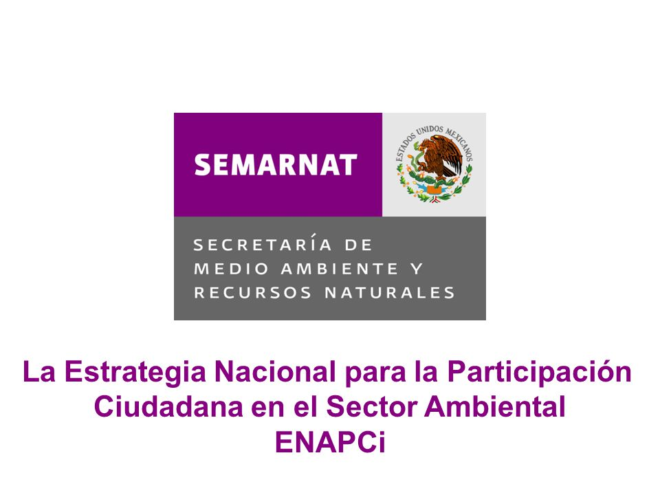 Naturaleza Proceso de creación Objetivo Misión, visión y valores Antecedentes Las estrategias La Estrategia Nacional para la Participación Ciudadana e