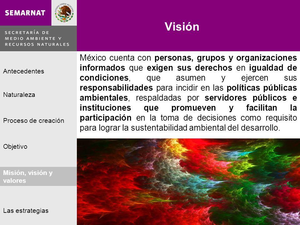 Naturaleza Proceso de creación Objetivo Misión, visión y valores Antecedentes Las estrategias Visión Lo malo México cuenta con personas, grupos y orga