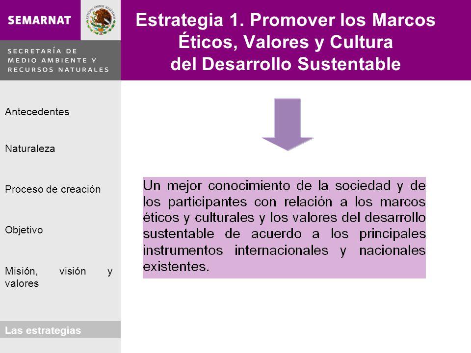 Naturaleza Proceso de creación Objetivo Misión, visión y valores Antecedentes Las estrategias Estrategia 1. Promover los Marcos Éticos, Valores y Cult