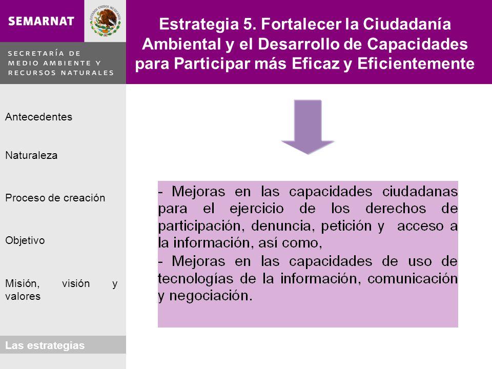 Naturaleza Proceso de creación Objetivo Misión, visión y valores Antecedentes Las estrategias Estrategia 5. Fortalecer la Ciudadanía Ambiental y el De