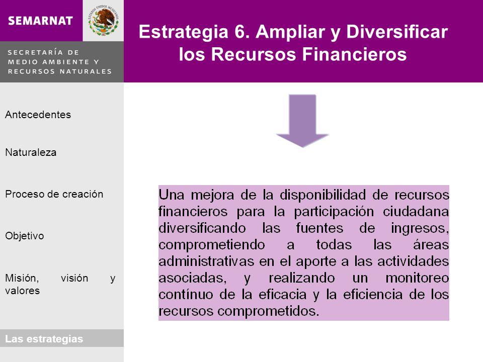 Naturaleza Proceso de creación Objetivo Misión, visión y valores Antecedentes Las estrategias Estrategia 6. Ampliar y Diversificar los Recursos Financ