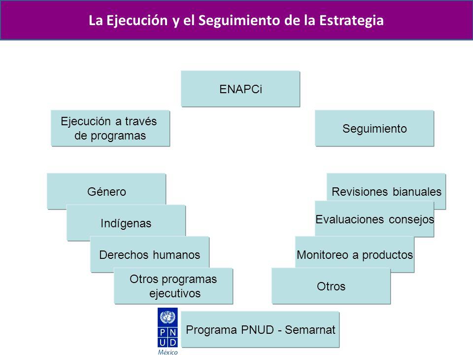 Naturaleza Proceso de creación Objetivo Misión, visión y valores Antecedentes Las estrategias La Ejecución y el Seguimiento de la Estrategia ENAPCi Ej