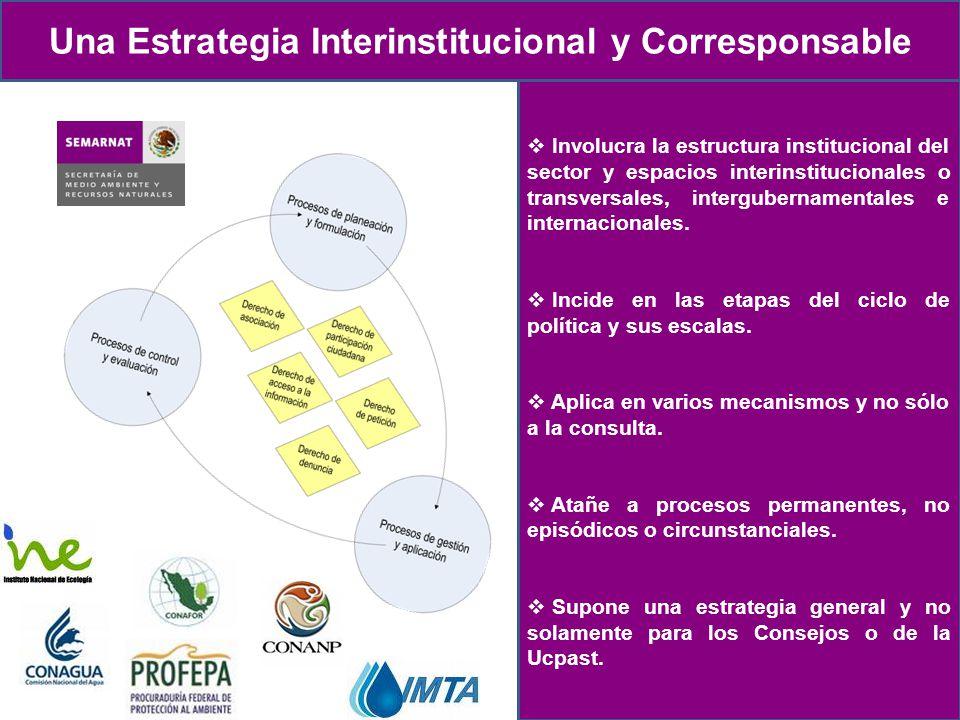 Naturaleza Proceso de creación Objetivo Misión, visión y valores Antecedentes Las estrategias Estrategia 1.