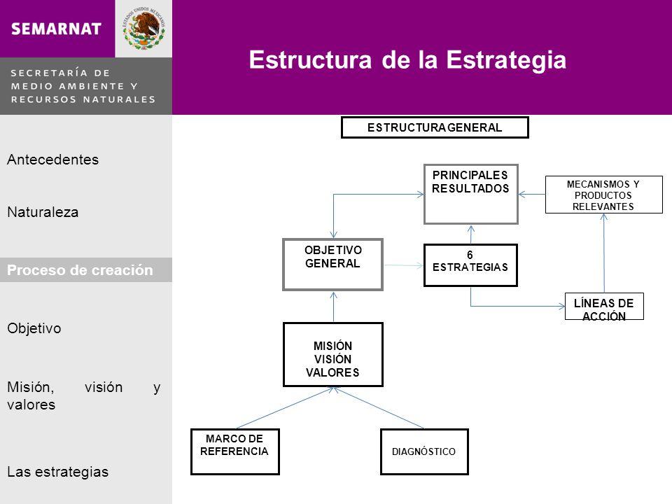 Naturaleza Proceso de creación Objetivo Misión, visión y valores Antecedentes Las estrategias Estrategia 2.
