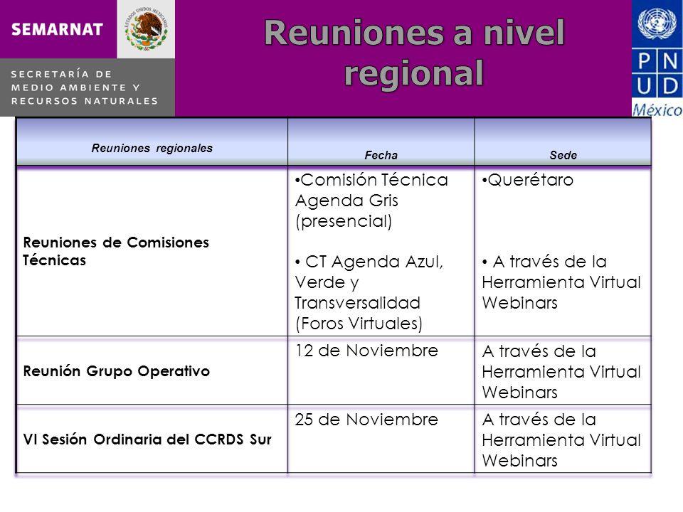 REUNIONES POR NÚCLEO * Reuniones reportadas en el Proyecto PNUD-Semarnat