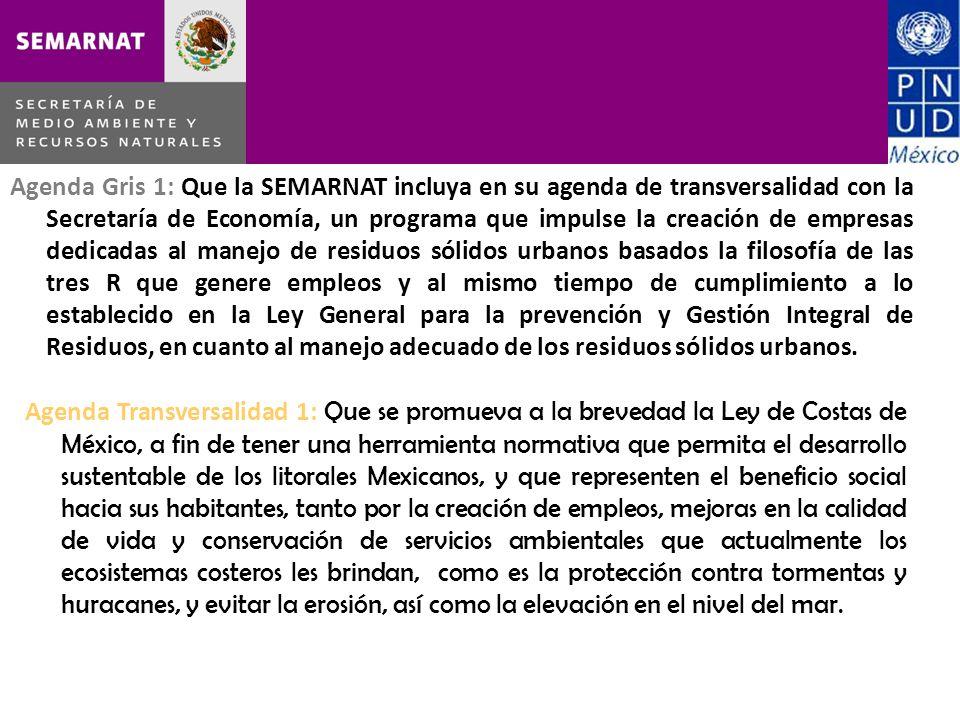 Agenda Gris 1: Que la SEMARNAT incluya en su agenda de transversalidad con la Secretaría de Economía, un programa que impulse la creación de empresas