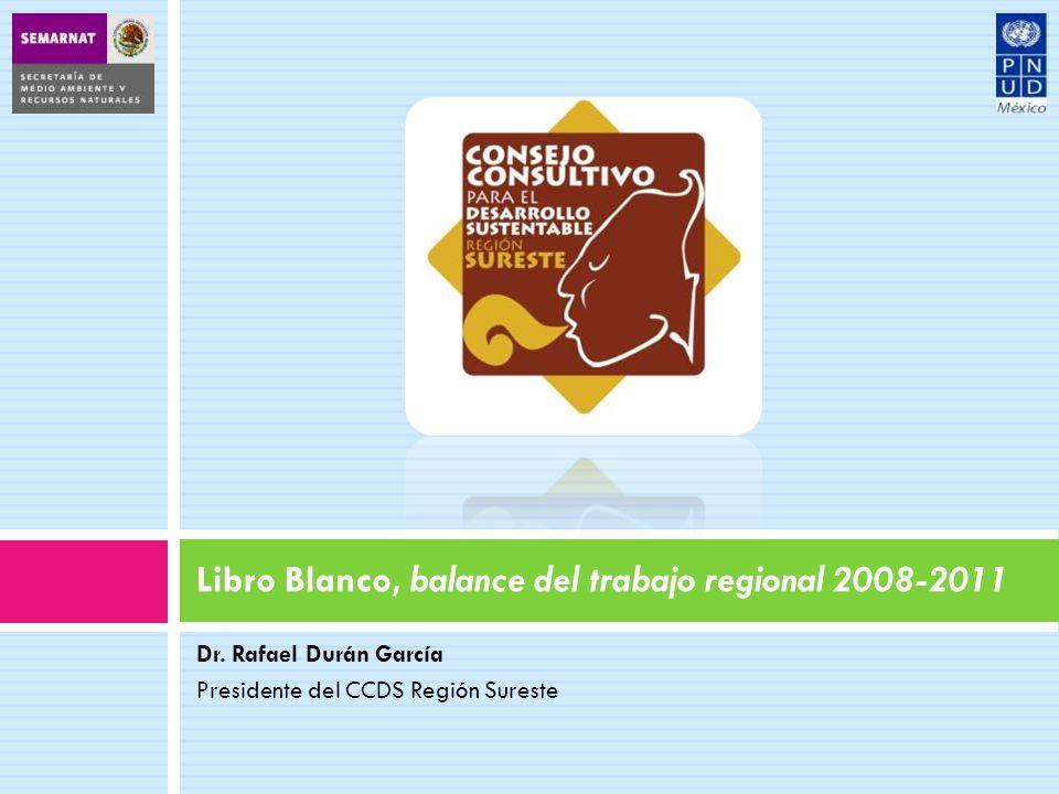 Dr. Rafael Durán García Presidente del CCDS Región Sureste Libro Blanco, balance del trabajo regional 2008-2011
