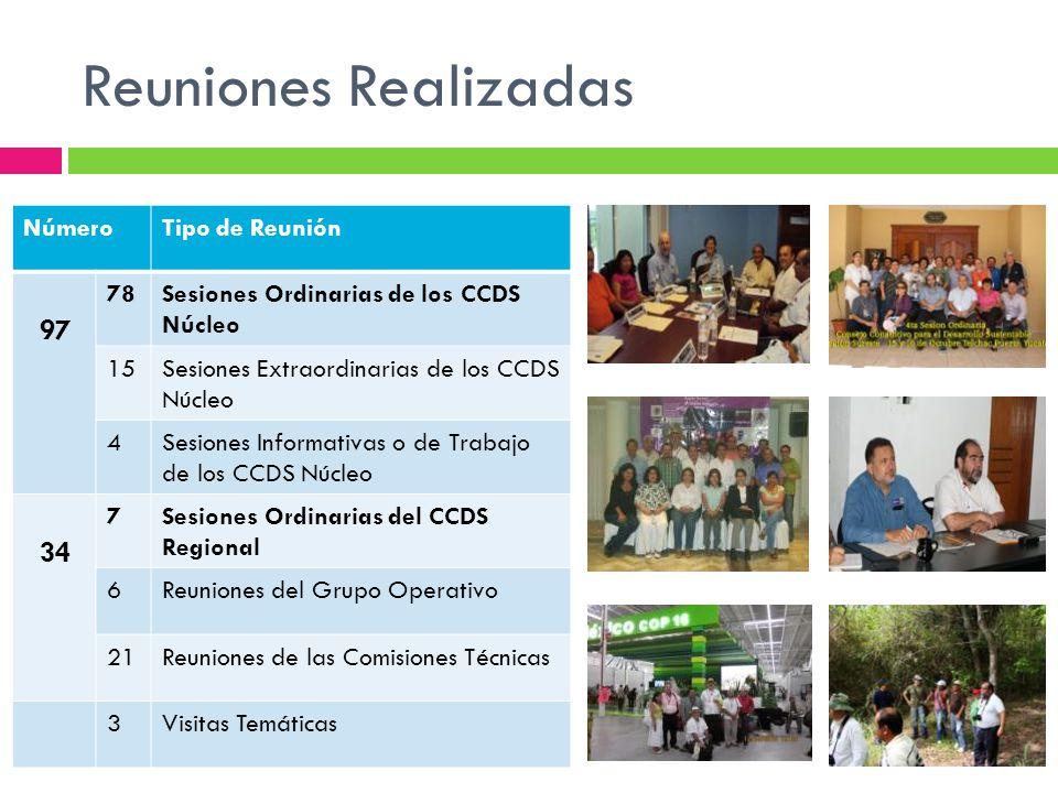 Reuniones Realizadas NúmeroTipo de Reunión 97 78Sesiones Ordinarias de los CCDS Núcleo 15Sesiones Extraordinarias de los CCDS Núcleo 4Sesiones Informa
