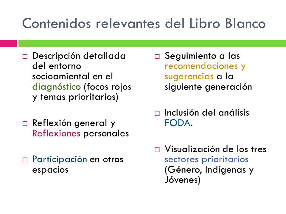 Contenidos relevantes del Libro Blanco Descripción detallada del entorno socioamiental en el diagnóstico (focos rojos y temas prioritarios) Reflexión