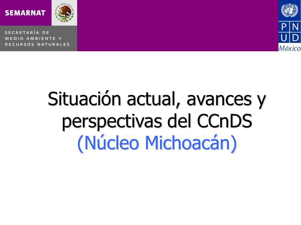 Situación actual, avances y perspectivas del CCnDS (Núcleo Michoacán)