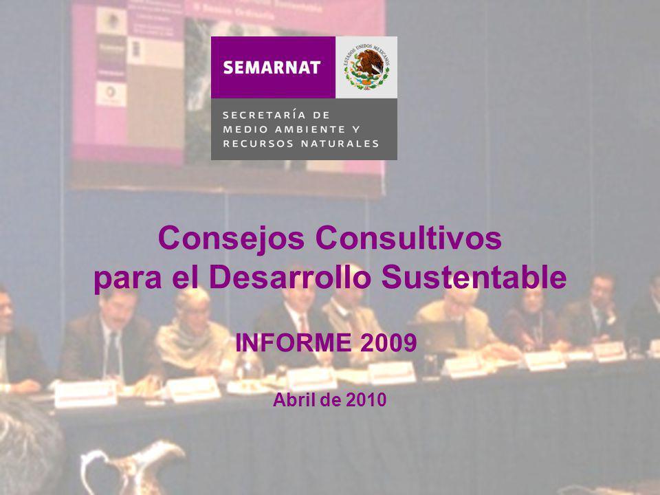 Consejos Consultivos para el Desarrollo Sustentable INFORME 2009 Abril de 2010