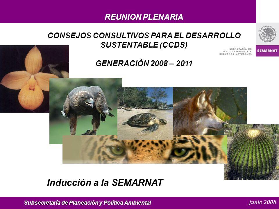 junio 2008 REUNION PLENARIA CONSEJOS CONSULTIVOS PARA EL DESARROLLO SUSTENTABLE (CCDS) GENERACIÓN 2008 – 2011 Inducción a la SEMARNAT Subsecretaría de